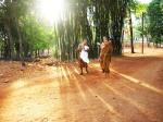 วัดป่าดอนหายโศก กฐิน 2555